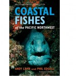 Coastal-FIshes-Of-The-Pacific-Northwest1.jpg
