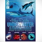 The-Blue-Realm-Underwater-Adventure-DVD.jpg