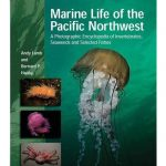 marine-life-of-the-pacific-northwest